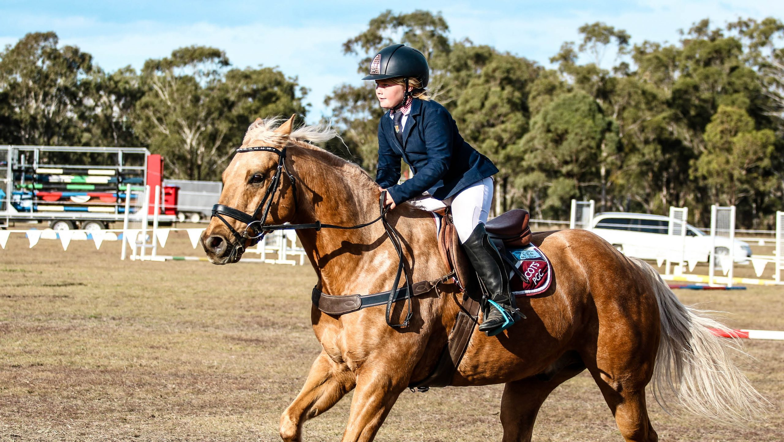 https://scotspgc.com.au/wp-content/uploads/2020/05/Girl-competing-in-equestrian-warwick-scaled.jpg